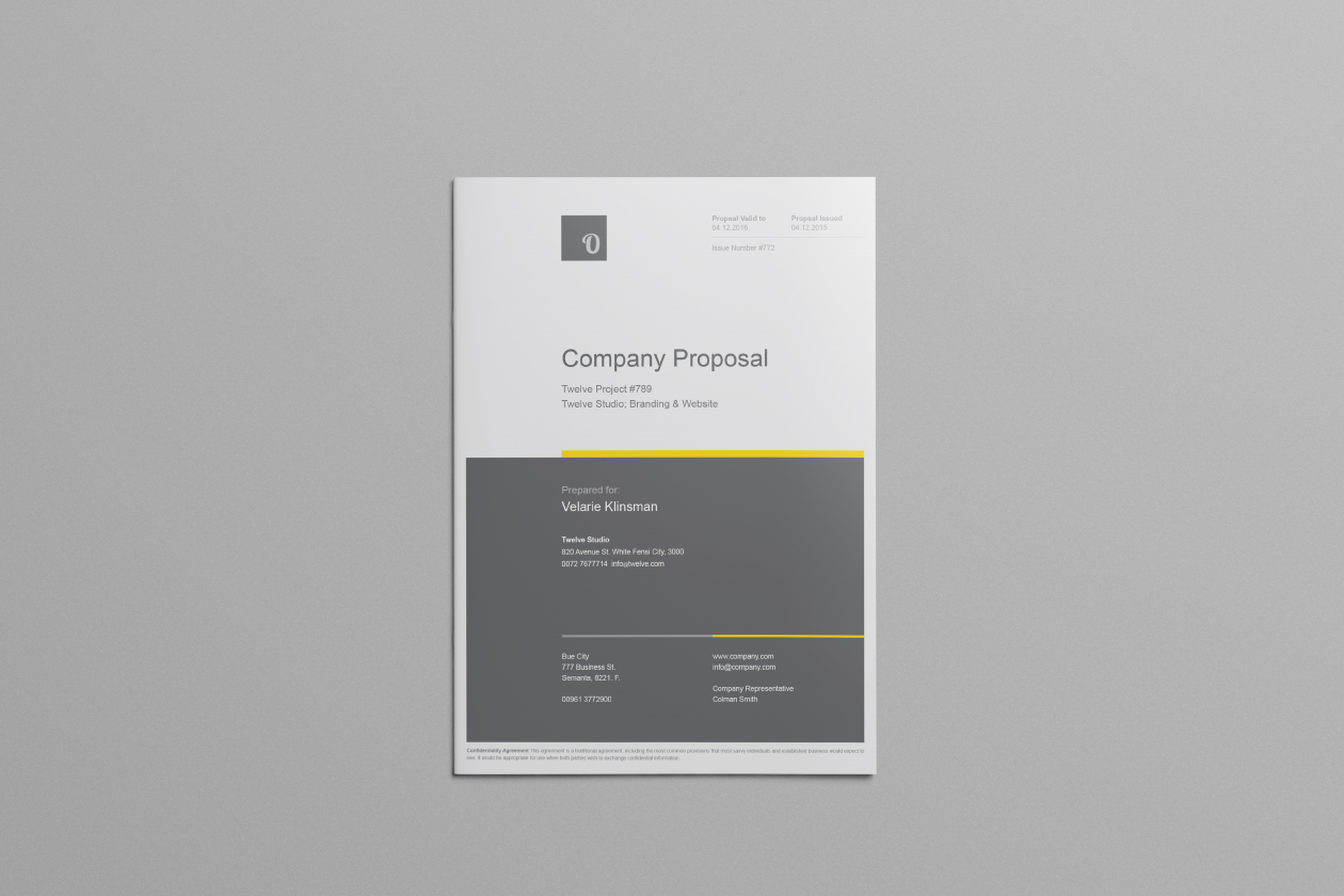 Company Proposal Template  Best Proposal Templates