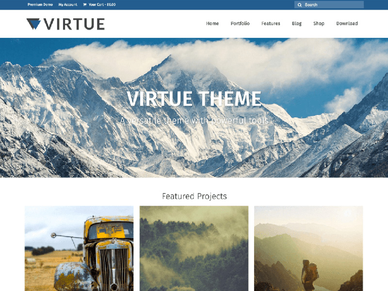 unique free ecommerce wordpress themes