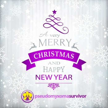 Merry Christmas form the team at Pseudomyxoma Survivor