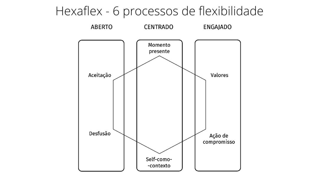 Hexaflex ACT - português