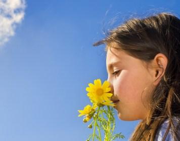 ¿Por qué los olores nos traen recuerdos?