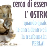 ostrica - PERLA Ettore Zinzi 2017 zz