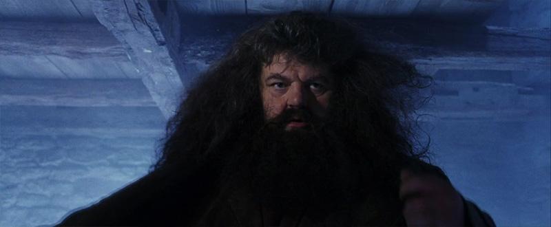 Hagrid - Harry Potter e la Pietra Filosofale - Rilettura del quarto capitolo - Psicologorroico