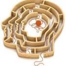 psicologos en costa rica la regla fundamental