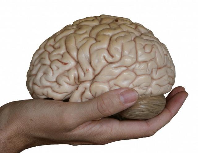 Terapia Metacognitiva