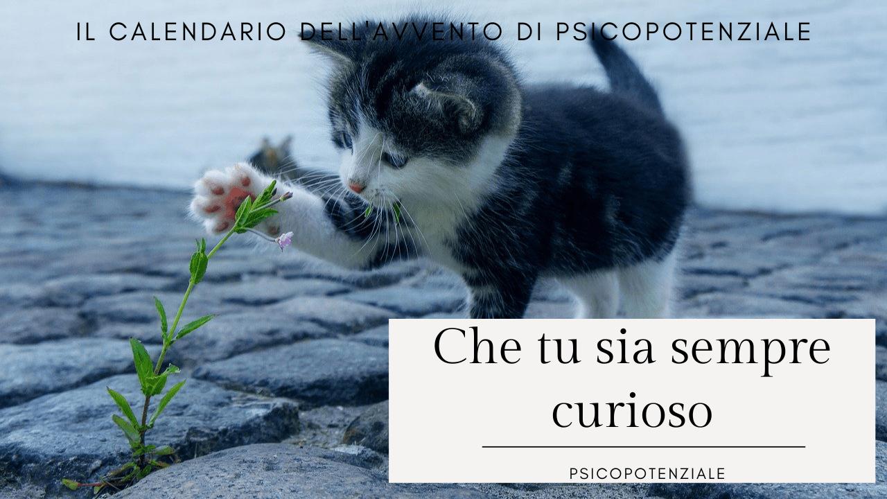 Read more about the article [Ep. 023] Che tu sia sempre curioso