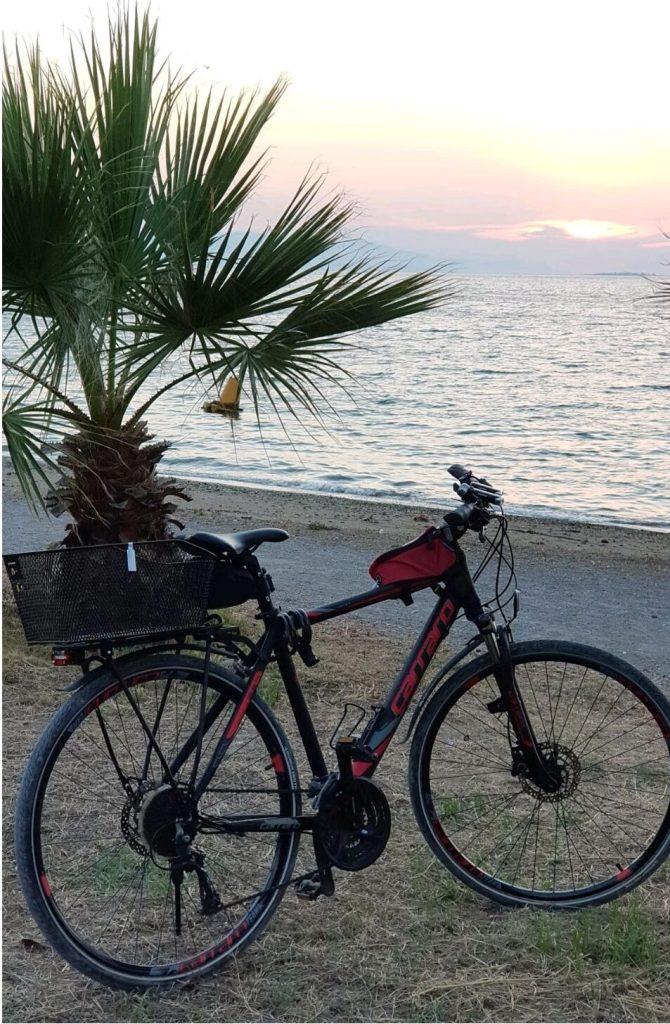 Dünya Bisiklet Günü