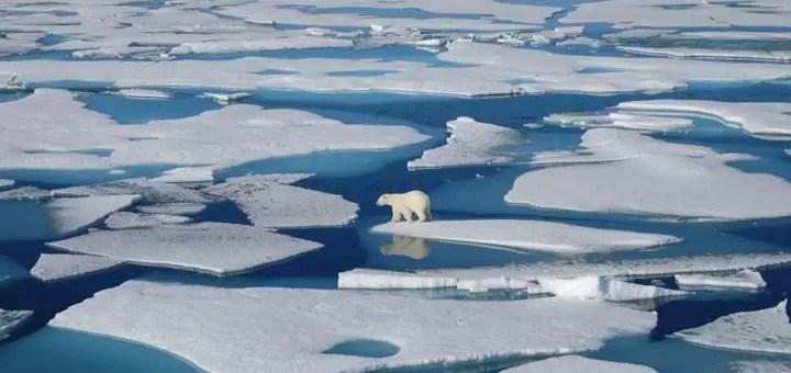 İklim Değişikliğini Daha Kötü Hale Getiren Özellik