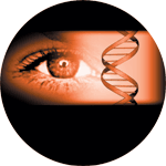 Ophthalmotropic Genetic Therapy connection with Iridology and DNA