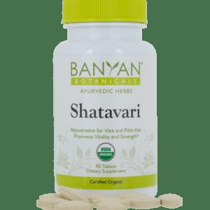 Shatavari 500 mg, 90 tabs by Banyan Botanicals