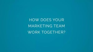 How does your marketing team work together?