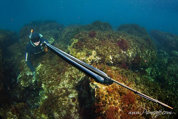 Mares viper pro 100
