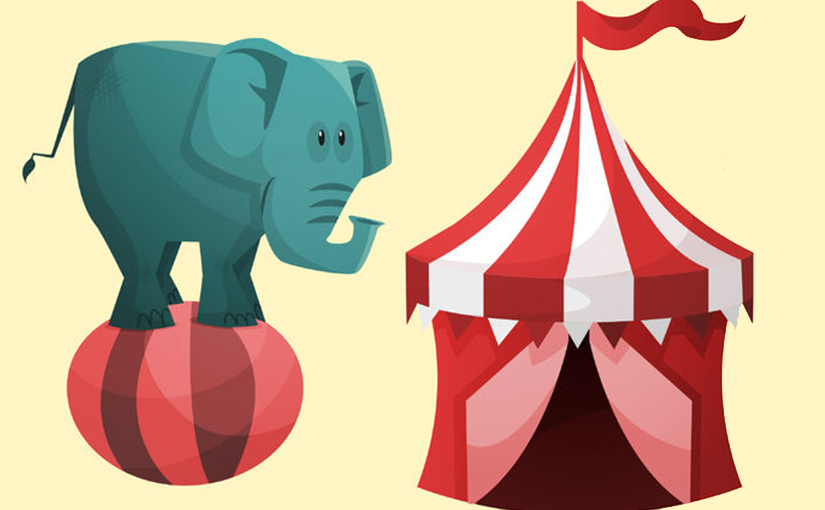 The elephant at the circus.