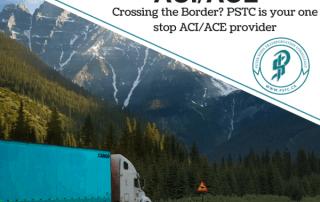 ACE and ACI Service Provider