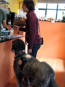 A service dog handler pays for her drink at a coffee shop.