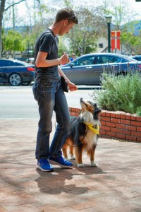Outside on a brick walkway in front of a brick planter, a young man in a plain, dark t-shirt and jeans looks down lovingly at his medium-sized herding dog, who is looking back up into his eyes