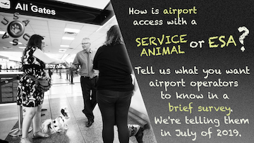 "Graphic with text. Text: ""How is airport access with a service animal or ESA? Tell us what you want airport operators to know in a brief survey. We're telling them in July of 2019."" Black and white picture: In an airport, a man in a tie stands facing two women with small service dogs. The woman on the left shakes the man's hand as her service dog sits and looks up toward the man."