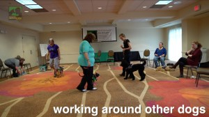 Video screenshot showing three teams walking around a large room together.