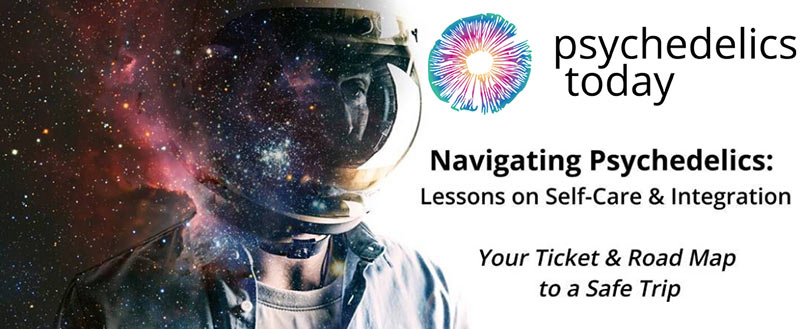 Navigation Psychedelic courses