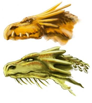 drageons-etudes