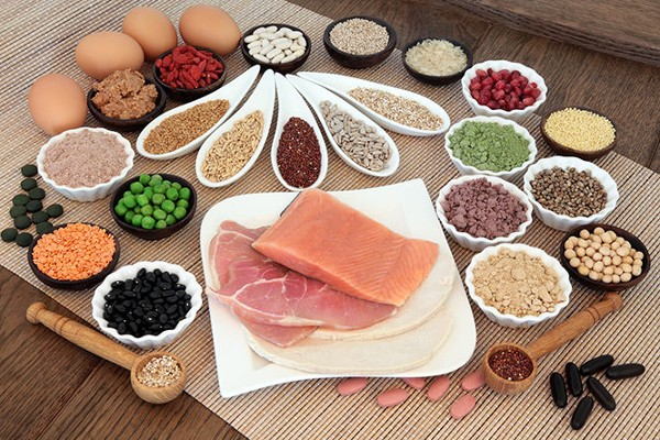 """<span class=""""hpt_headertitle"""">What Are The Differences Between Meat, Soy, Whey, Dairy, Hemp and Other Proteins?</span>"""