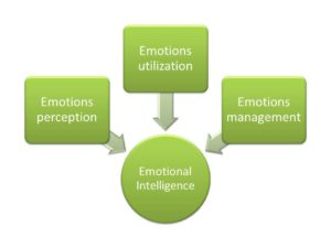 emotional intelligence assessment aspects