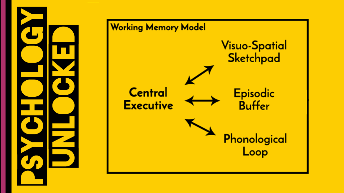 Baddeley & Hitch (1974) | Working Memory