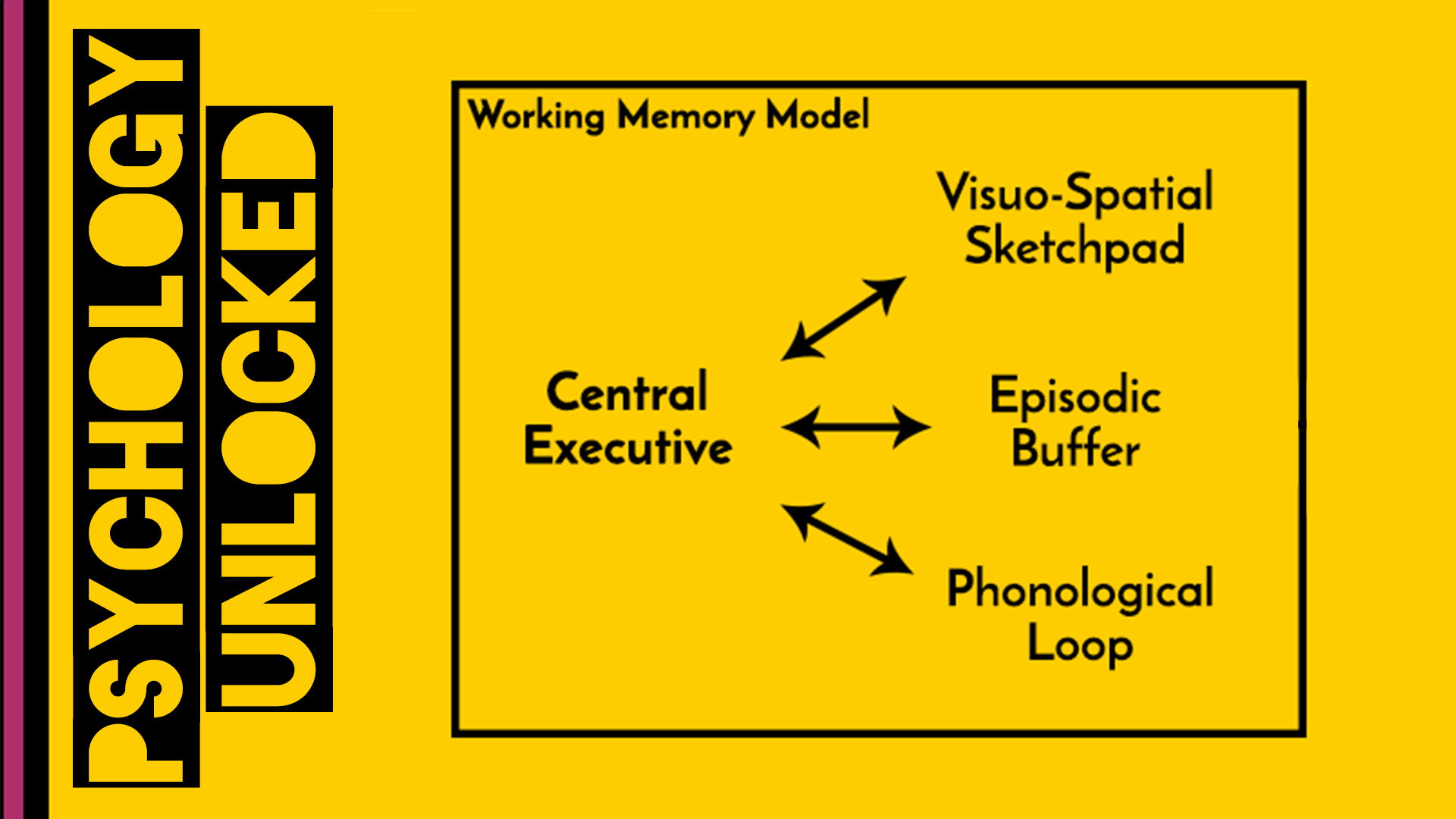 Baddeley & Hitch , Working Memory