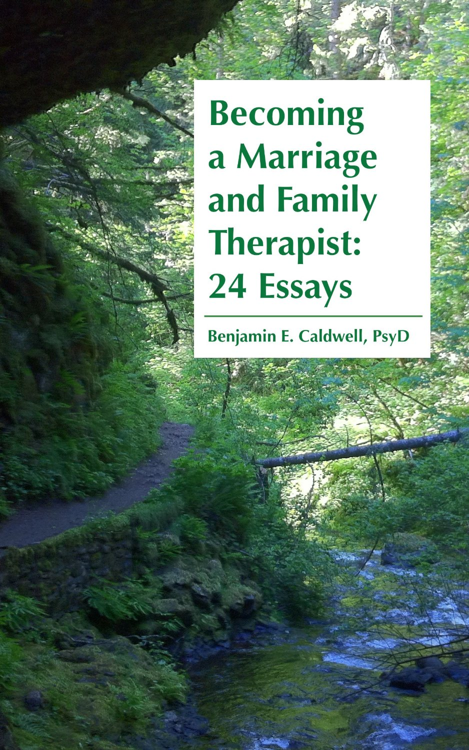 becoming a marriage and family therapist essays available now ldquobecoming a marriage and family therapist 24 essaysrdquo available now