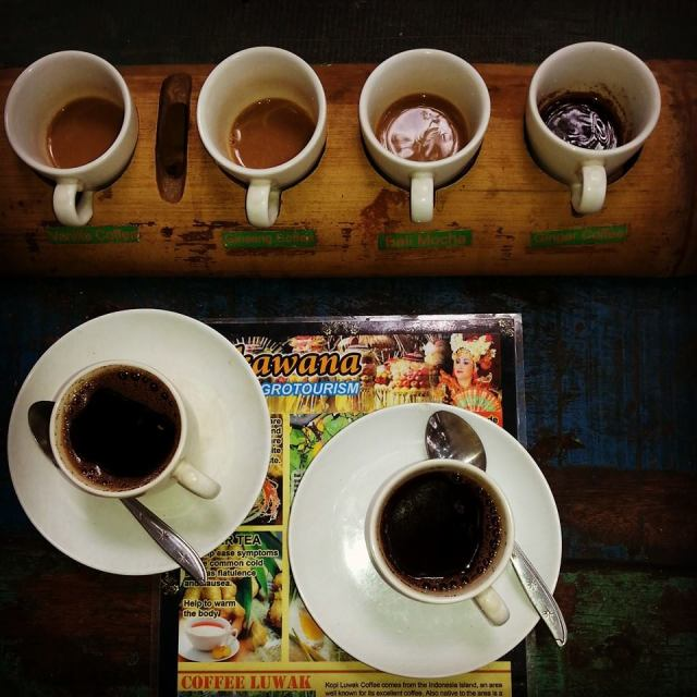FREE COFFEE TASTING