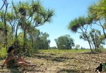 Hunting Arnhem land