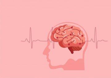 human brain with waves