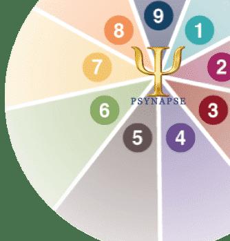 formation pnl et hypnose -  roue enneagramme