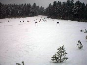 2003-02-15-Stramka_Image007