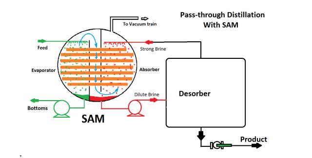 SAMptd2