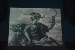 Um dos temas do Museu em Imagens foi a Fauna e a Flora