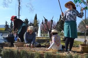 O Desfile pretende mostrar as vivências do concelho/ Foto: Salomé Ferreira