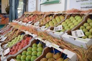 Concelho produz cerca de sete milhões de euros de maçã/ Foto: Salomé Ferreira