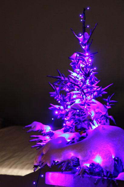 Christmas Wallpaper Iphone 5 Purple Christmas Tree Free Stock Photo Public Domain