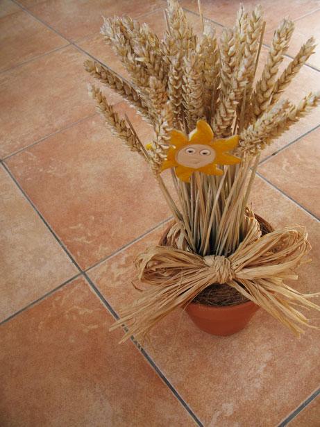 Dry Grain Decoration Free Stock Photo  Public Domain Pictures