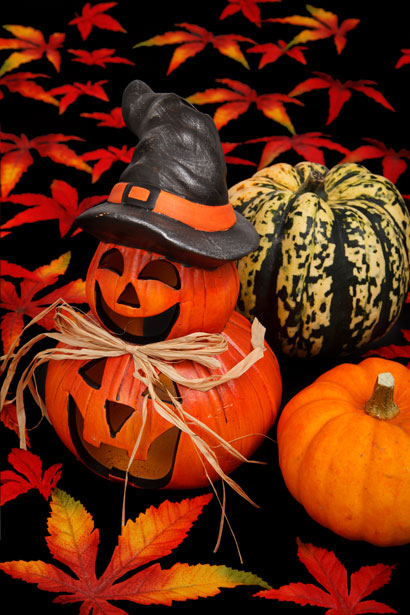 Computer Wallpaper Fall Leaves Halloween Decoration On Black Free Stock Photo Public