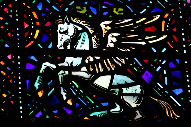 Pegasus by Vera Kratochivl