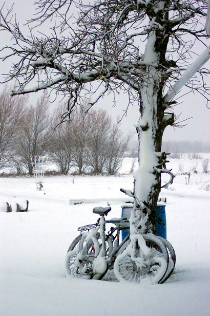 Free Fall Flowers Wallpaper Snow Covered Bicycle Free Stock Photo Public Domain Pictures