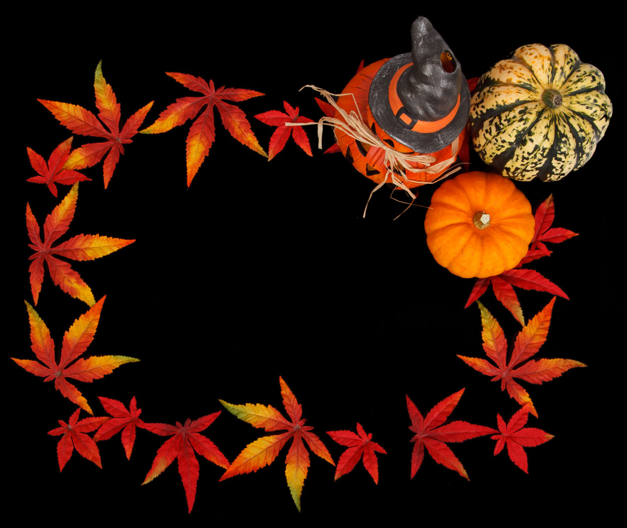 Fall Of The Leaf Wallpaper Halloween Frame Free Stock Photo Public Domain Pictures