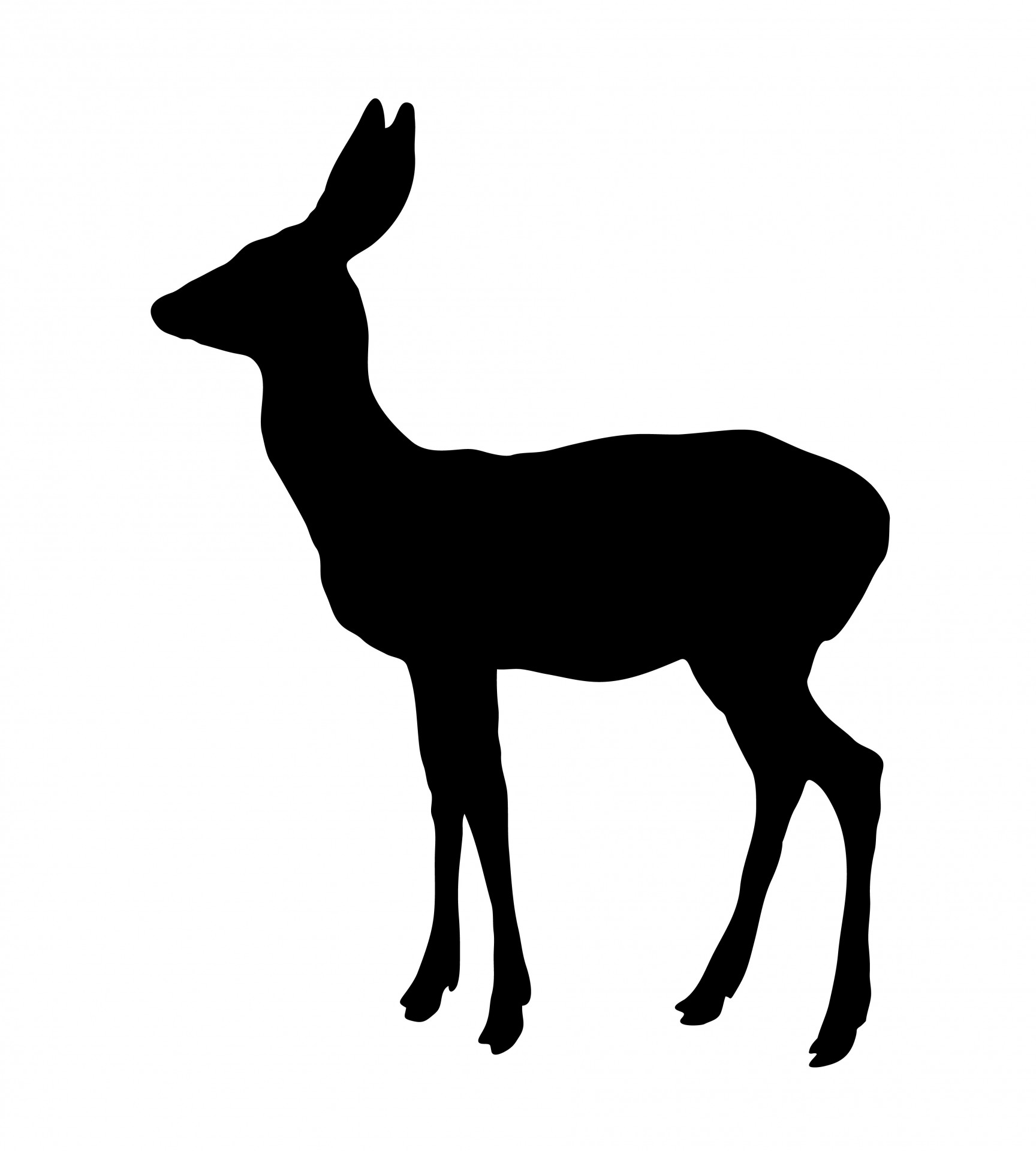 Deer Silhouette Free Stock Photo - Public Domain Pictures