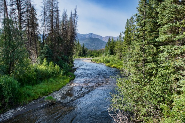 Free Fall Forest Wallpaper Winding Wyoming Stream Free Stock Photo Public Domain