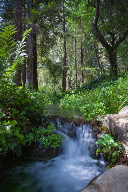 Small Waterfall In Forest Free Stock Photo  Public Domain