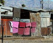 Four Pink Towels In Poverty