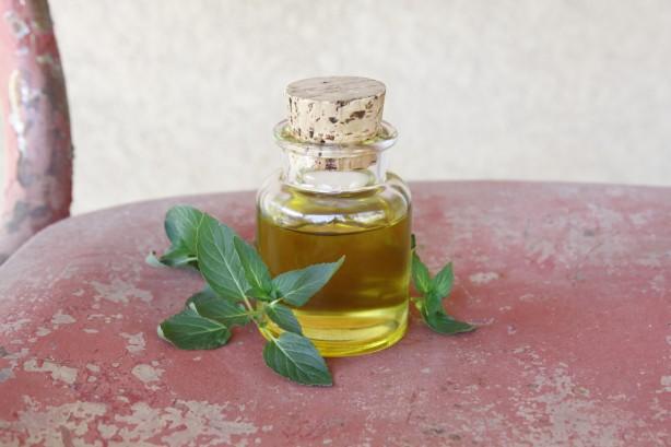 Resultado de imagen para aceite esencial menta