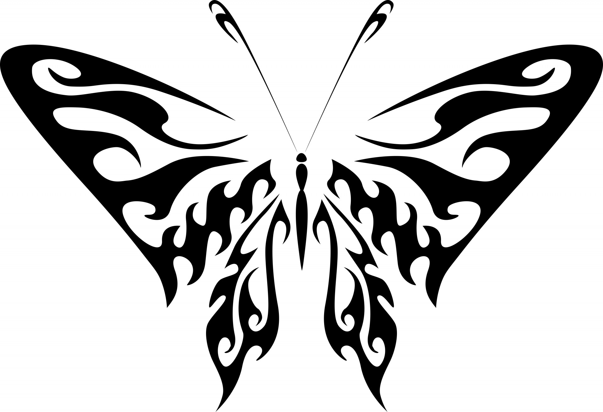 Silhouette Of A Butterfly Free Stock Photo